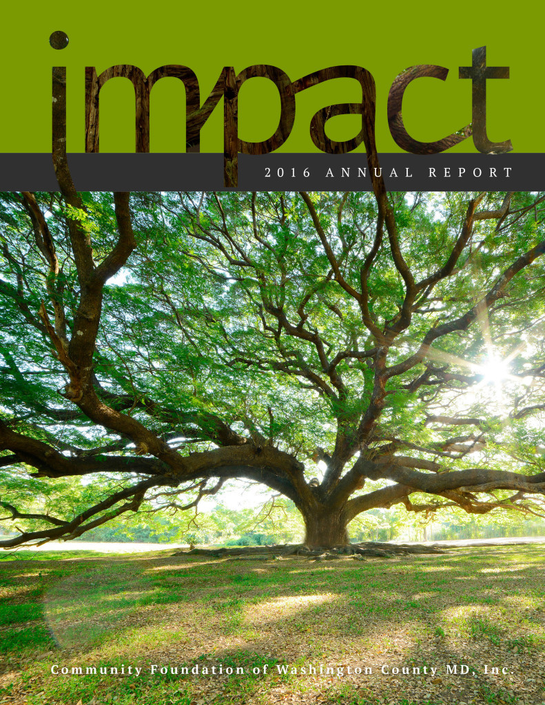 Impact-Cover-2016-web
